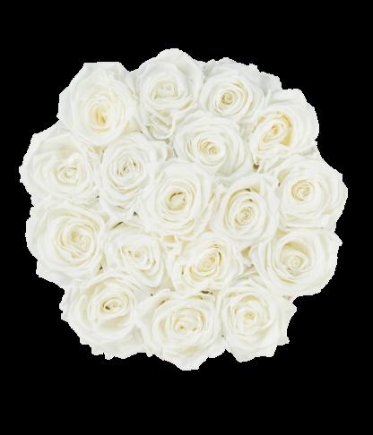 Rosenbox Classic mit Infinity Rosen, champagne in L im Detail