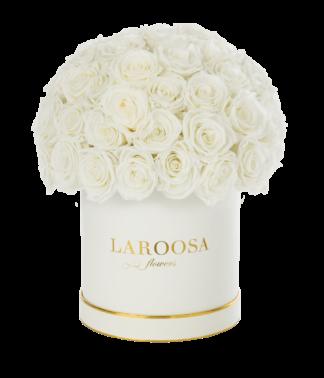Rosenbox Superior mit Infinity Rosen, champagne in L