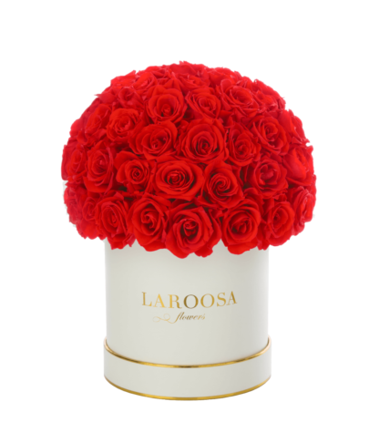 Rosenbox Superior mit Infinity Rosen, lady red in M