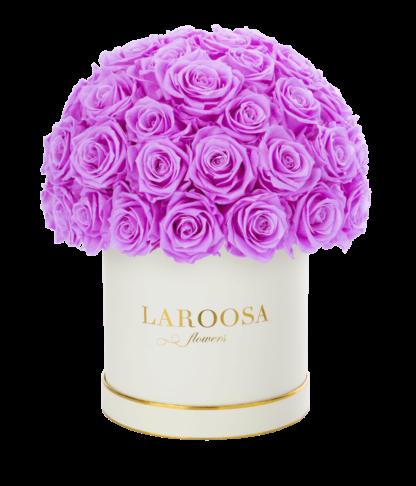 Rosenbox Superior mit Infinity Rosen, lovely lilly in ML