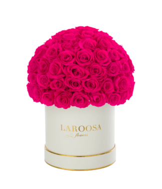 Rosenbox Superior mit Infinity Rosen, perfect pink in M